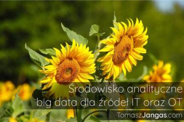 Środowisko analityczne big data dla źródeł IT i OT